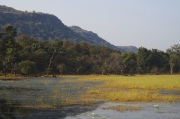 landscape rhantambore