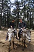naldehra horse riders